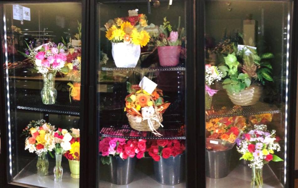 schiffspassage lissabon flores